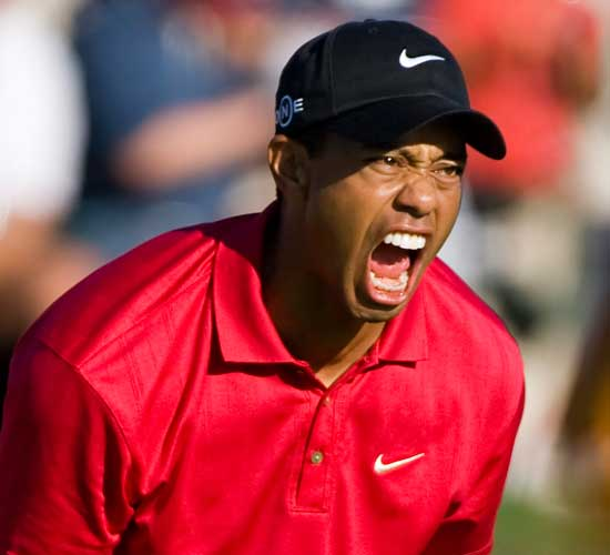 Contact Page Image - Tiger Woods Photo By Alan Smith